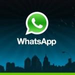 whatsapp license