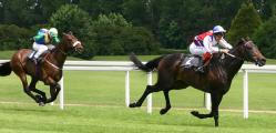 hourse racing